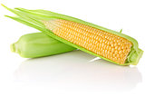 ripe juicy corn
