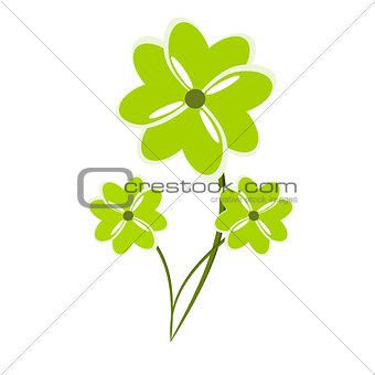 Four clover plants