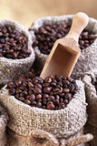 Roasted coffee beans in burlap sacks