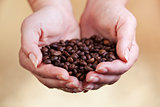 Coffee beans in woman palms