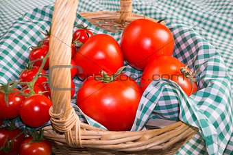 Tomatoes closeup