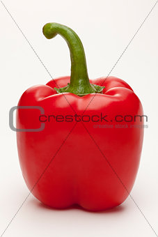 single sweet red pepper