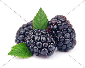 Sweet blackberry fruit