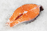 Red fish on ice