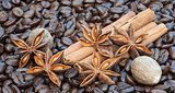 Detail image of coffee beans, cinnamon sticks, sar anise and nut