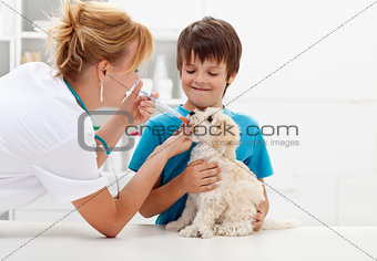 Boy at the veterinary with his dog
