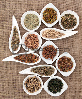 Medicinal and Magical Herbs