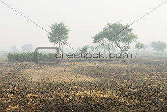 Foggy cultivated plowed fields