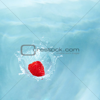 Small berry - big splash!