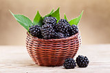 Fresh blackberry in small fruit basket