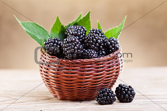 Fresh blackberry in small fruit basket