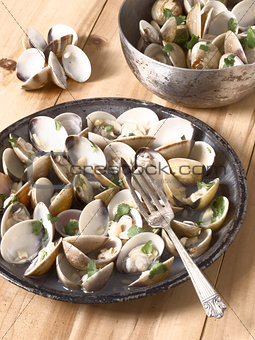 white clams in white wine sauce