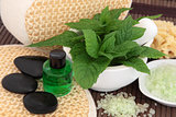 Mint Herb Spa Treatment