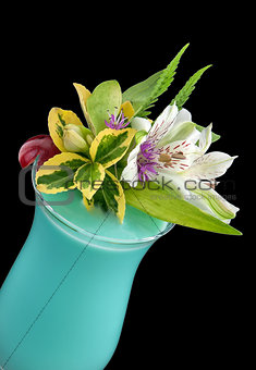Alcohol drink, cocktail with flower, isolated