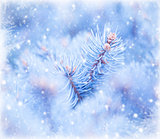 Winter window background