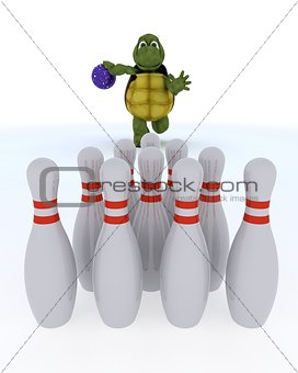 tortoise ten pin bowling