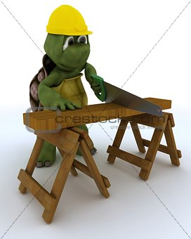 tortoise carpenter contractor