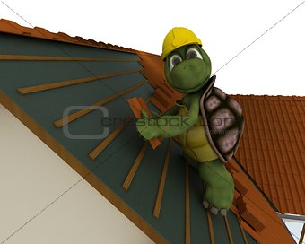 tortoise roofing contractor