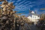 Stockfish