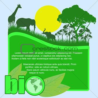 Green bio poster