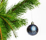 blue decoration ball on fir branch