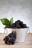 Bucket of fresh blackberries on silver background