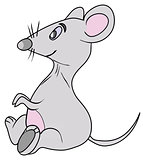 the grey mouse with pink belly