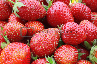 some of strawberries