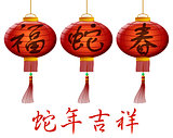 Happy 2013 Chinese New Year of the Snake Lanterns