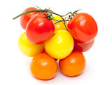 Multicolored Ripe Fresh Tomatoes