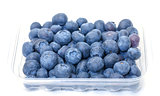 Fresh Blueberries in Plastic Container