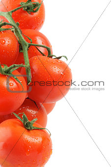 Frame of Tomatoes on twigs