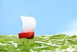 boat, made of fresh strawberry
