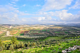 Israeli landscape