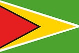 Illustrated Drawing of the flag of Guyana