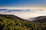 Misty mountains landscape view