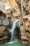 source of mineral water  spring in national park Ein Gedi