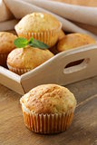 homemade cupcakes muffins on wooden table