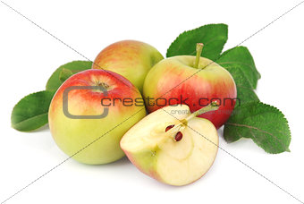 summer apple fruits