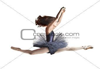 Indigo Dancer