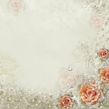 Grunge white  wedding background with roses