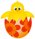 Easter Chick Hatching Illustration
