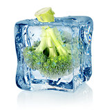 Broccoli in ice