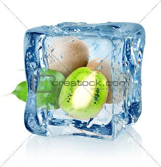 Ice cube and kiwi