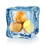 Ice cube and potato