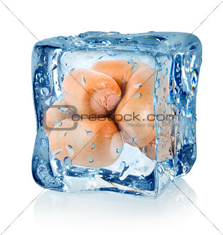 Ice cube and smoked sausage isolated