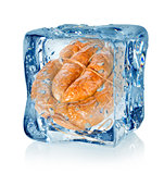 Ice cube and smoked sausage