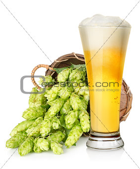 Light beer and hop in basket