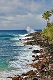 Waimea Bay, Oahu.