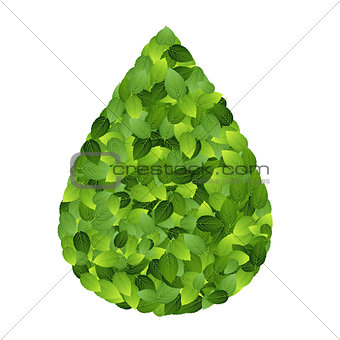 Green eco friendly label from green leaves. Vector illustration.